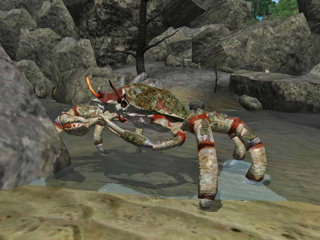Ganga Crab