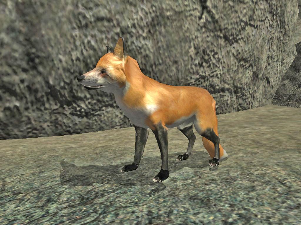 Rabid Fox