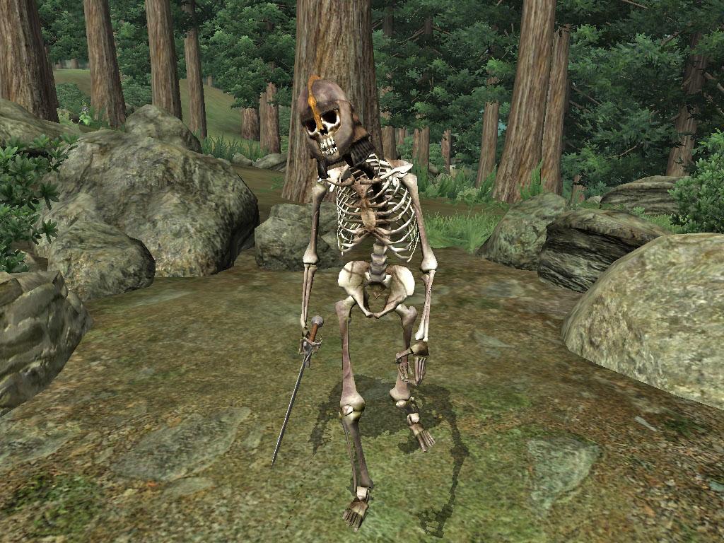 Acolyte Skeleton