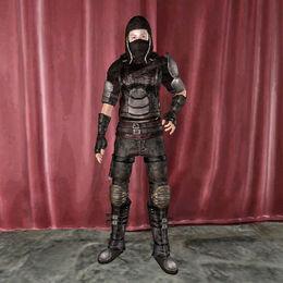 Assasin Armor female.jpg