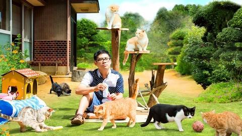 Neko Atsume no Ie Full Trailer