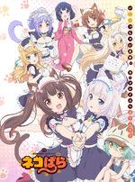 Nekopara (Anime)