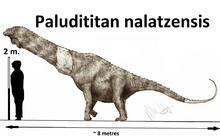 Paludititan nalatzensis by teratophoneus-d95iifg.png