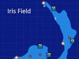 Dungeon/Re;Birth2/Iris Field