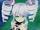 Fairy H (Uni) VII.png