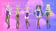 HDNA-Bunny Girl Collection Lottery Illustration