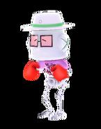 Boxer-x