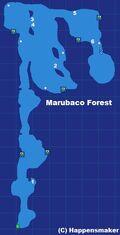 Marubaco Forest.jpg