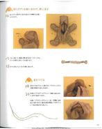 SPT.rabbit.Takahiro Hasegawa.8