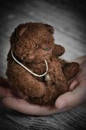 Teddy Bear Sewing Pattern (Kristina Shabily & Elena Zaugolnaya)