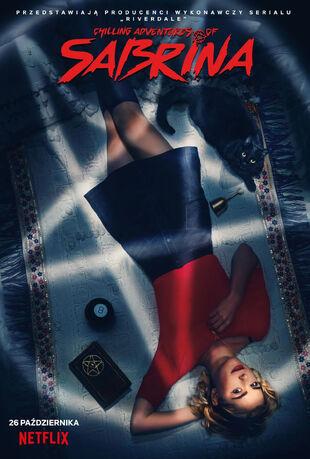 Polski plakat serialu