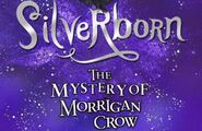 Slider-SilverbornMock