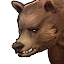 Trained grizzly.png