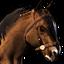 Calimshain horse.png