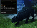 Starry Panther.png