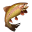 Crafting Resource Trout.png