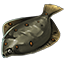 Icons Inventory Fishing Giantplaice.png