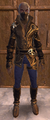 NW LeatherSet 07.png