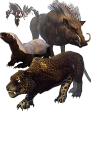 Collection Content Foreground Companions BeastsOfFaerun.png