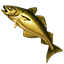 Icons Inventory Fishing Pollock.png
