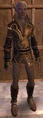 NW LeatherSet 02.png