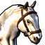 Pale horse.png
