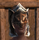 NW Draconic Templar Hood TR.png