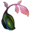 Icon Inventory Misc Verdantseed 01.png