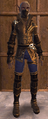 NW LeatherSet 09.png