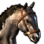 Icons Inventory Mount Arabian Grullo.png
