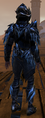NW Corrupted Black Ice Armor Male Back.png