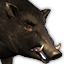Icons Inventory Mount Boar Lunar.png