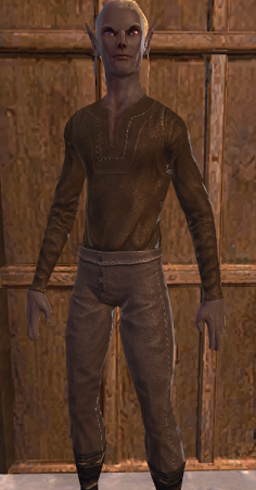 NW Leather ShirtPants 01.png