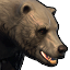 Icons Inventory Mount Bear 01.png