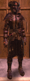 NW LeatherSet 13.png