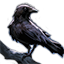 Icons Companion Wanderingscarecrow.png