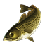Icons Inventory Fishing Northerncod.png