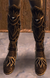 NW Fabled Iliyanbruen Boots TR.png