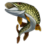 Icons Inventory Fishing Northernpike.png