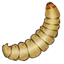 Event Winter Fishing M15 Waxworms Shore Bait White.png