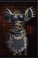 Timeless Hero's Armor.png