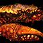 Icons Inventory Mount Crab Orange 01.png