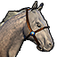 Icons Inventory Mount Horse Dappleriding 01.png
