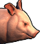 Icons Inventory Mount Pig 01.png