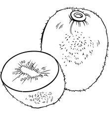 SSW 2 (Food 4).jpg