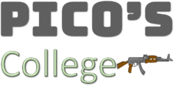 Picollege Logo.png