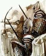 Heavy Akinian Troops