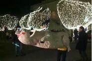 A giant hog is dropped in Fayetteville, Arkansas