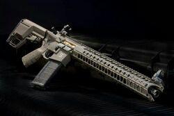 Salient Arms AR-15.jpg