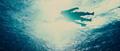 Vlcsnap-2016-11-03-17h53m58s627